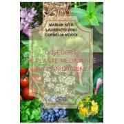 Culegere de plante medicinale anticancerigene - Marian Nita