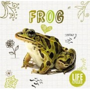 Life Cycle of a Frog by Grace Jones