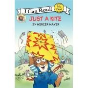 Little Critter: Just A Kite by Mercer Mayer