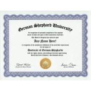 German Shepherd Dog Degree: Custom Gag Diploma Doctorate Certificate (Funny Customized Joke Gift - Novelty Item)