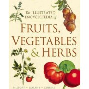 The Illustrated Encyclopedia of Fruits, Vegetables, and Herbs by Deborah Madison
