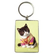 Sleutelhanger Rachael Hale: Snickers (kitten)