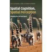 Spatial Cognition, Spatial Perception by Francine L. Dolins