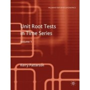 Unit Root Tests in Time Series: v. 1 by Kerry Patterson