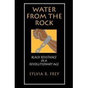 Water from the Rock by Sylvia R. Frey