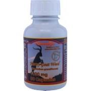 Horny Goat Weed - Epimedium 90 Caps/1000mg