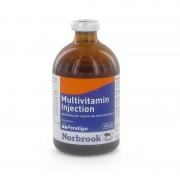 Multivit Injectie 100ml