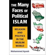 The Many Faces of Political Islam by Mohammed Ayoob