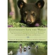 Ecotourists Save the World by Pamela K Brodowsky