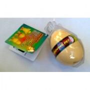 Growing Pet Chicken Egg by Greenbriar International