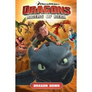 DreamWorks' Dragons: Dragon Down (How to Train Your Dragon TV) Volume 1 by Simon Furman