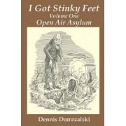 I Got Stinky Feet, Volume One by Dennis Domrzalski