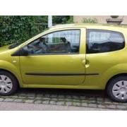Renault Twingo À Strasbourg