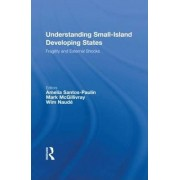 Understanding Small-Island Developing States by Amelia Santos-Paulino
