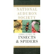 The Audubon Society Field Guide to North American Insects and Spiders by Lorus Johnson Milne