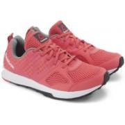 Reebok REEBOK DASH TR Training & Gym Shoes(Pink)