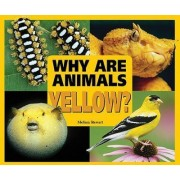 Why are Animals Yellow? by Melissa Stewart