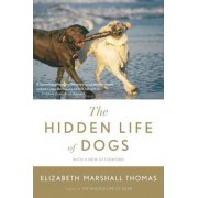 The Hidden Life of Dogs by Elizabeth Marshall Thomas