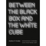 Between the Black Box and the White Cube by Andrew V. Uroskie