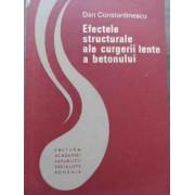Efectele Structurale Ale Curgerii Lente A Betonului - Dan Constantinescu