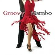 Artisti Diversi - Groovy Mambo -14tr- (0090204685653) (1 CD)