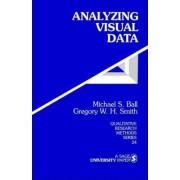 Analyzing Visual Data by Michael S. Ball