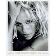 Pamela Anderson American Icon Pam Sante D'Orazio
