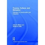 Trauma, Culture, and Metaphor by John P. Wilson