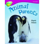 Oxford Reading Tree: Level 10A: TreeTops More Non-Fiction: Animal Parents by Elspeth Graham