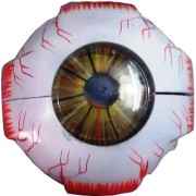 Scientific Educational Model of Herindera Human Eye Ball with Muscles in 7 Parts
