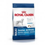 Royal Canin maxi junior active pack 2 x 15 kg