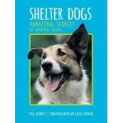 Shelter Dogs by Peg Kehret
