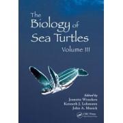 The Biology of Sea Turtles: Volume III by Jeanette Wyneken