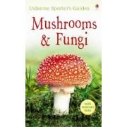 Mushrooms & Fungi by Richard Clarke