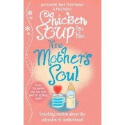 Chicken Soup for the New Mother's Soul by Jack Canfield