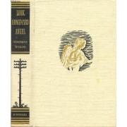 Look Homeward Angel (A Story Of The Buried Life)