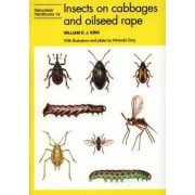 Insects on Cabbages and Oilseed Rape by William D.J. Kirk