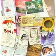 30 assorted Scriptural cards for all occasions - English (Scriptural Greeting Card Set)