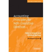 Accounting Principles for Non-Executive Directors by Peter Holgate