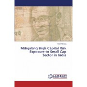 Mitigating High Capital Risk Exposure to Small Cap Sector in India
