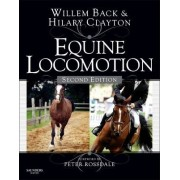 Equine Locomotion by Willem Back