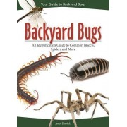 Backyard Bugs: An Identification Guide to Common Insects, Spiders and More