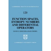 Function Spaces, Entropy Numbers, Differential Operators by D. E. Edmunds