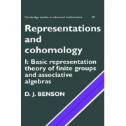 Representations and Cohomology: Volume 1, Basic Representation Theory of Finite Groups and Associative Algebras: [Vol] 1 by D. J. Benson