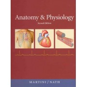 Anatomy & Physiology (text Component) by Frederic H. Martini