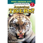 I Can Read Amazing Tigers by Sarah L Thomson