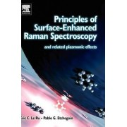 Principles of Surface Enhanced Raman Spectroscopy by Eric Le Ru
