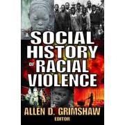 A Social History of Racial Violence by Allen D. Grimshaw