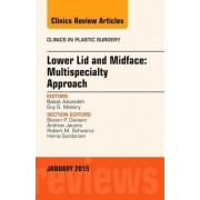 Lower Lid and Midface: Multispecialty Approach, an Issue of Clinics in Plastic Surgery by Babak Azizzadeh