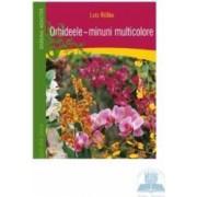 Orhideele minuni multicolore - Lutz Rollke